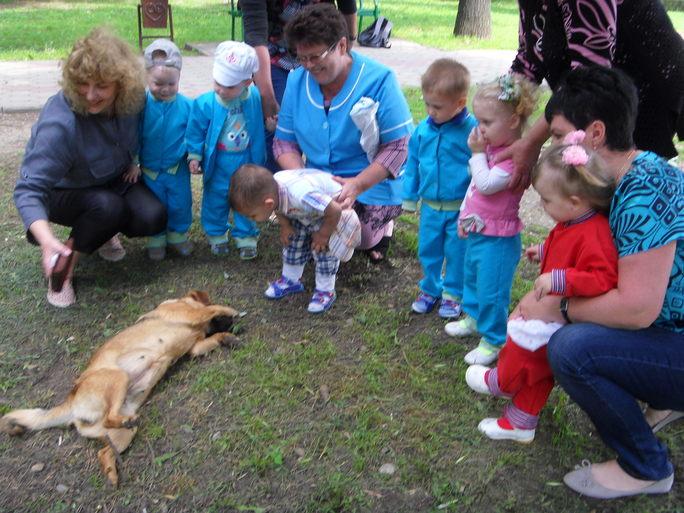 На территории дома ребенка нет животных, поэтому увидеть собачку это большая радость.